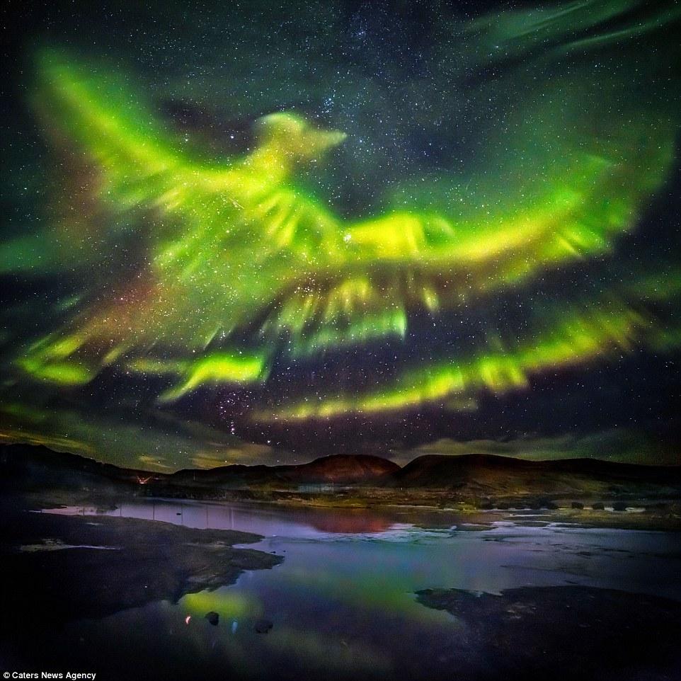 Phoenix 201903 - Hallgrimur P Helgason